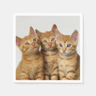 Drei niedliche papierserviette