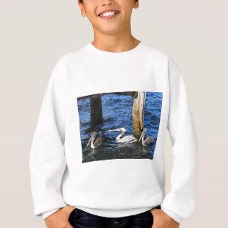 Drei Pelikane im Wasser Sweatshirt