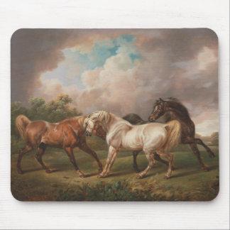 Drei Pferde in einer stürmischen Landschaft Mousepad
