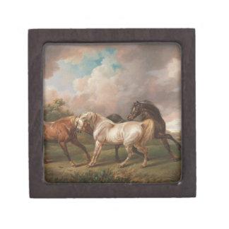 Drei Pferde in einer stürmischen Landschaft Schachtel