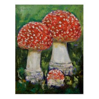 Drei Pilz-Postkarte Postkarte