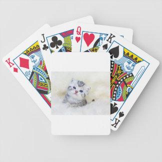 Drei-Wochen-alte junge Katze, die auf Schafpelz Bicycle Spielkarten