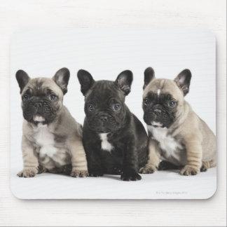 Drei Zucht- Welpen Mousepads