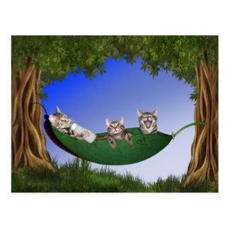 Dreiergruppe-Kätzchen Postkarte
