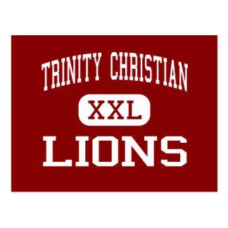 Dreiheits-christliches - Löwen - hohes - Lubbock Postkarte