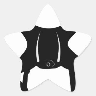 Drohne-Fliegen Stern-Aufkleber