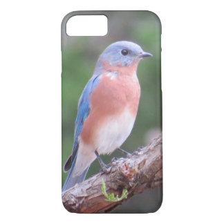 Drossel IPhone Fall iPhone 8/7 Hülle