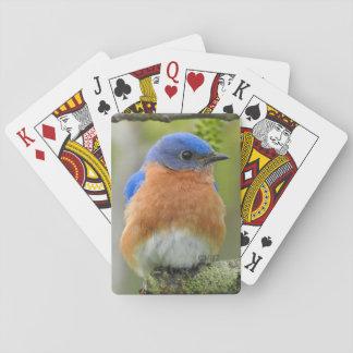 Drossel-Spielkarten Spielkarten