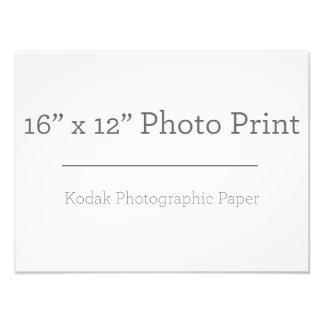 Druck der Gewohnheits-16 des Foto-X12