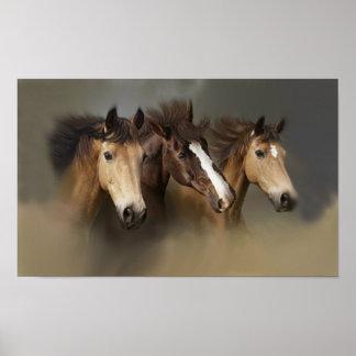 Druck der wilde Pferddrei Poster