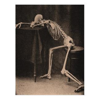Drunk Skeleton Postkarte