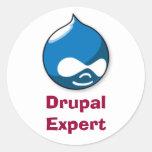 Drupal Experte Runder Aufkleber