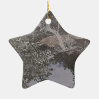 DSC_0958 (2).JPG Fisch-Entwurf durch Jane Howarth Keramik Ornament