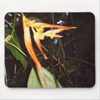 Dschungel Pflanze Mauspad