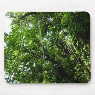 Dschungel Ropes tropisches Regenwald-Foto Mousepad