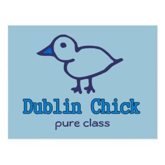 Dublin-Küken Postkarte