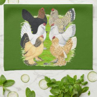 D'Uccles sechs Hennen Geschirrtuch