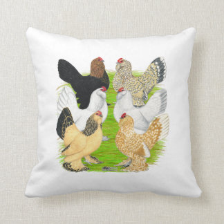 D'Uccles sechs Hennen Kissen