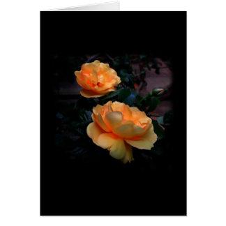 Dunkelgelb - orange Rosen, auf Schwarzem Karte