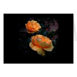Dunkelgelb - orange Rosen, auf Schwarzem. Karte