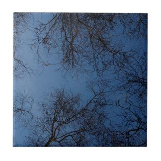 Dunkelheit silhouettierte Bäume Keramikfliese