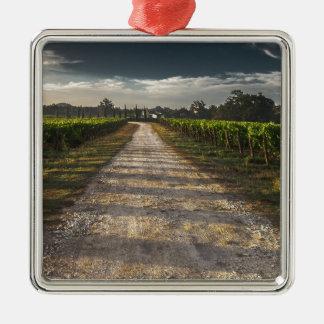 Dunkle Land-Straße Quadratisches Silberfarbenes Ornament