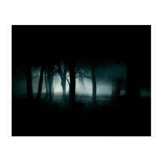 Dunkler Wald Postkarte