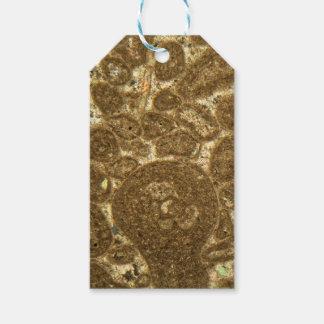 Dünner Abschnitt des Paleozoic Kalksteins unter Geschenkanhänger