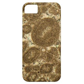 Dünner Abschnitt des Paleozoic Kalksteins unter iPhone 5 Schutzhülle