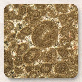 Dünner Abschnitt des Paleozoic Kalksteins unter Untersetzer