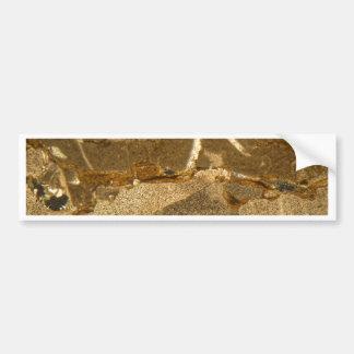Dünner Abschnitt des Triassic Karbonats unter dem Autoaufkleber
