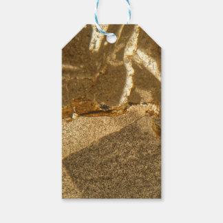 Dünner Abschnitt des Triassic Karbonats unter dem Geschenkanhänger