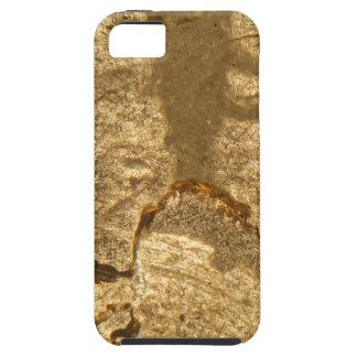 Dünner Abschnitt des Triassic Karbonats unter dem iPhone 5 Schutzhülle