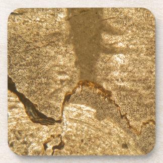 Dünner Abschnitt des Triassic Karbonats unter dem Untersetzer