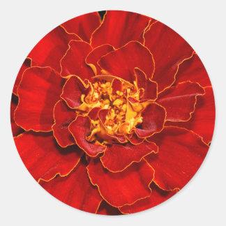 Durango-Rot-Ringelblume Runder Aufkleber