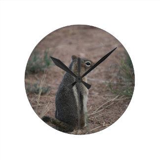 Durchdachtes Eichhörnchen Runde Wanduhr