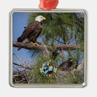 E10 E11 u. Familien-Feiertags-Verzierung Silbernes Ornament