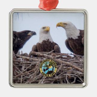 E9 u. Familien-Feiertags-Verzierung Silbernes Ornament