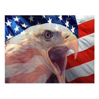 Eagle 8 postkarten