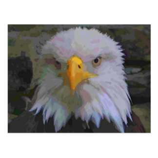 Eagle-Auge Postkarte