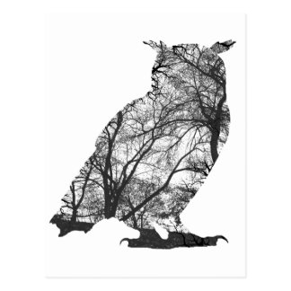 Eagle-EulenBäume des Waldes Postkarte