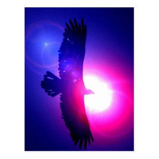Eagle-Flügel - Eagle im Flug Postkarten