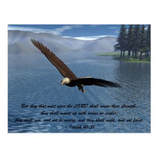 Eagle mit Schrift Postkarte