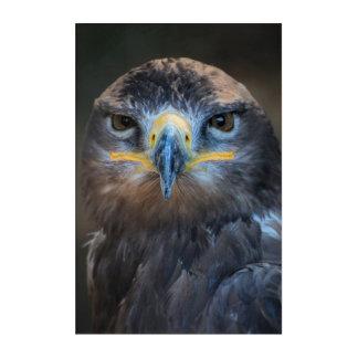Eagle-Porträt Acryl Wandkunst