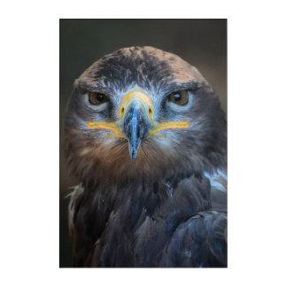 Eagle-Porträt Acryldruck