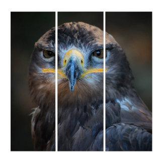 Eagle-Porträt Triptychon