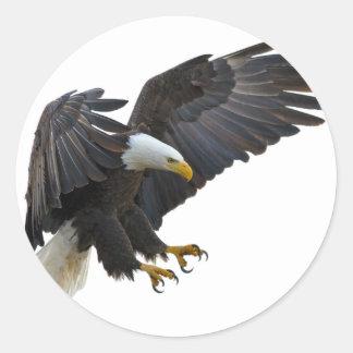 Eagle Runder Aufkleber