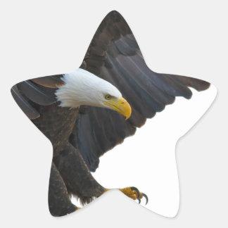 Eagle Stern-Aufkleber