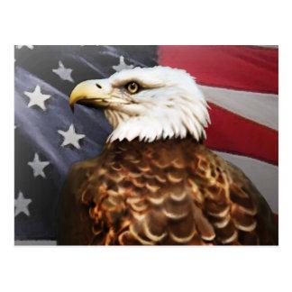 Eagle-USA Postkarten