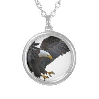 Eagle Versilberte Kette